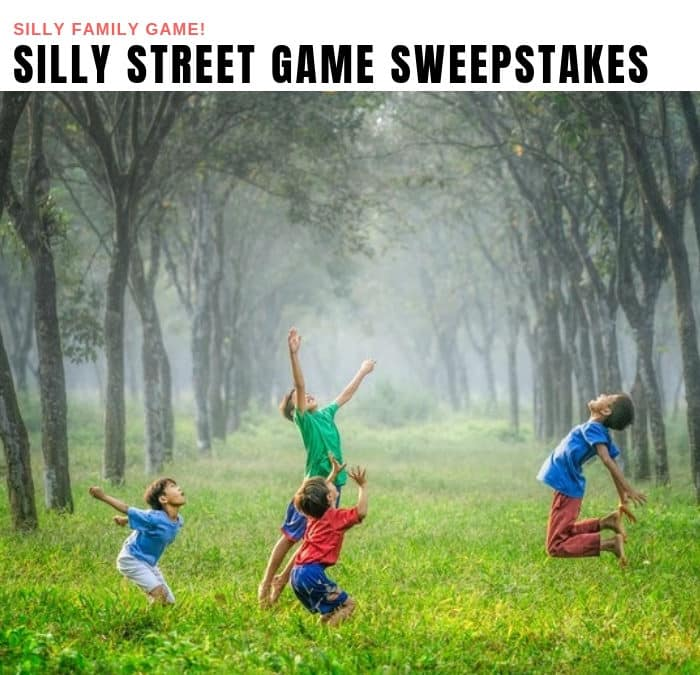 Buffalo Games Silly Street Sweepstakes
